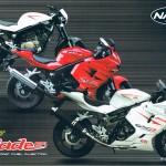 Naza Blade 250 (RM14,184.88), 250R (RM16,850.50) and 650R(RM26,073.00) Brochure
