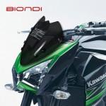 BiondiWindscreen-KawasakiZ800
