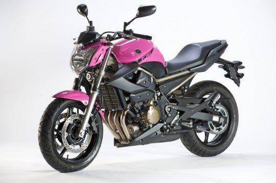 pink-XJ6