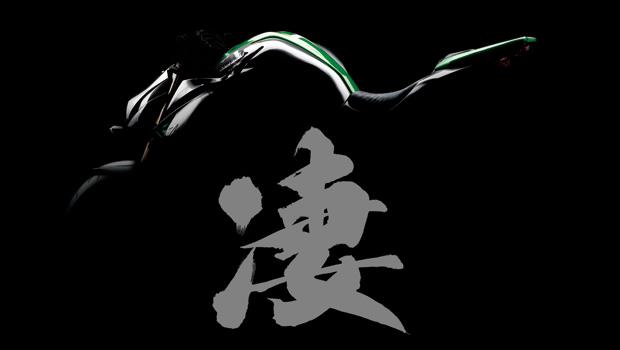 Kawasaki_Z1000_2014_sugomi1