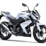Specs Comparison: 2014 Kawasaki Z250SL vs 2013 Kawasaki Z250